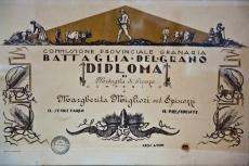 Documenti storici / Historical document