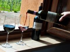 olio-vino-cerulli-spinozzi (1)