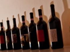 olio-vino-cerulli-spinozzi (2)