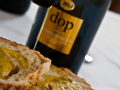 olio-vino-cerulli-spinozzi (4)