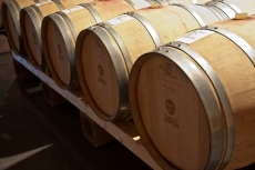 La cantina / Winery